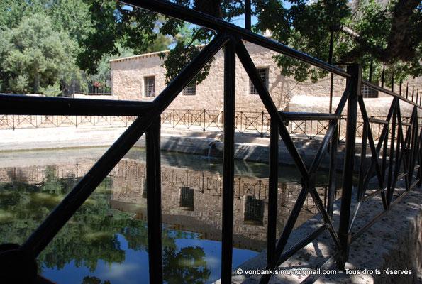 [NU900-2012-0142] Agia Napa : Bassin/réservoir situé à l'ombre d'un sycomore multiséculaire