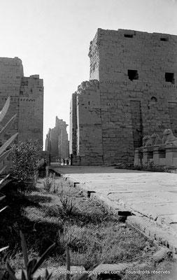 [NB077-1973-14] Karnak - Parvis du Temple : Vue partielle du dromos débouchant sur le premier pylône et sa porte d'accès à la grande cour