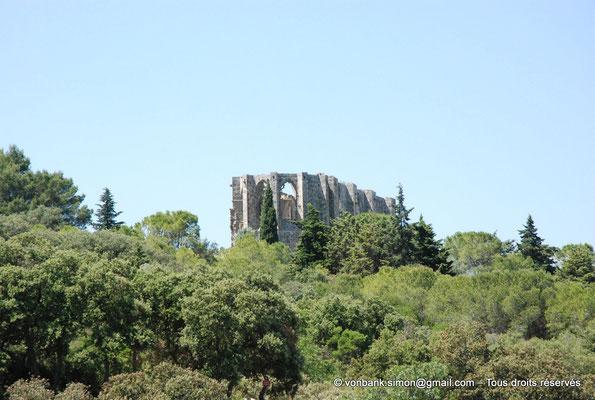 [NU001-2017-496] 34 - Gigean - Saint-Félix de Montceau : Ruines de l'abbatiale