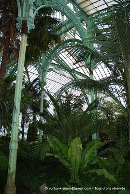[NU900c-2012-0223] B - Bruxelles - Laeken : Serres royales - Jardin d'hiver