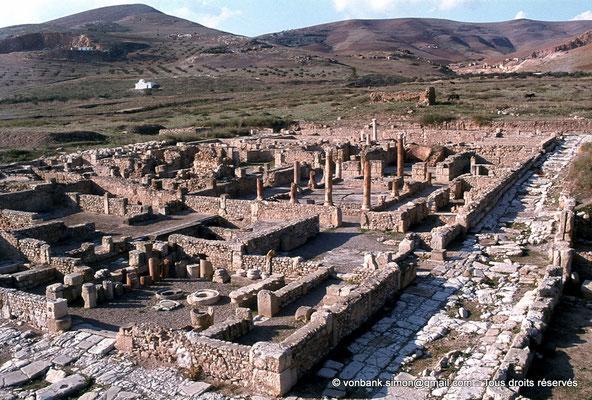 [079-1979-17] Bulla Regia : Insula des maisons de la chasse et de la nouvelle chasse (rez-de-chaussée)