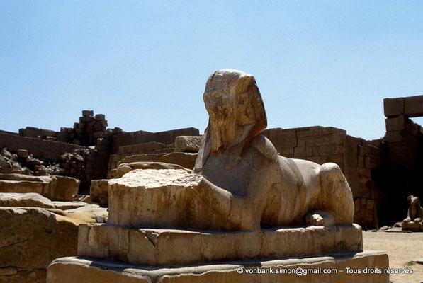 [069-1981-08] Karnak - Grande cour : A proximité du kiosque de Taharqa, sphinx à tête humaine (Tête de Toutankhamon ?)