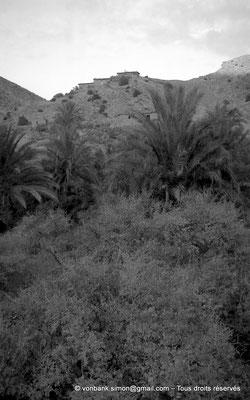 [NB062-1978-28] Massif de l'Aurès