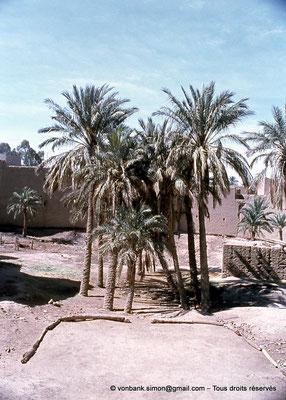 [021-1979-17] Sidi Okba