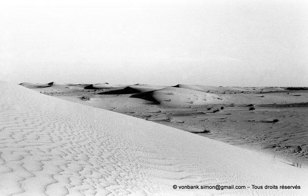 [NB049-1978-54] Désert - Dunes du grand erg oriental
