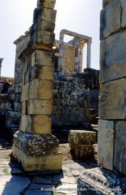 [001-1983-29] Djemila (Cuicul) : Temple Septimien