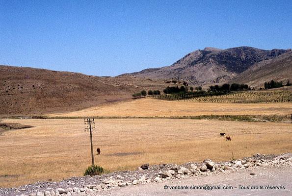 [041-1978-06] Massif de l'Aurès