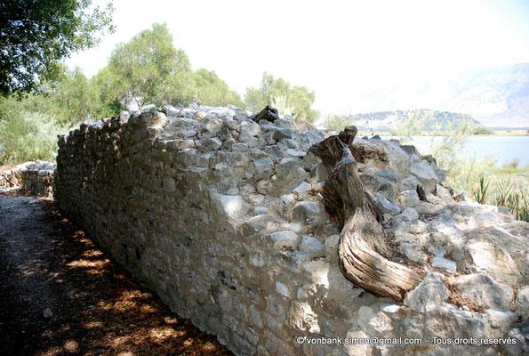 [NU902-2010-122] Butrint (Buthrotum) : Ruines d'un mur d'enceinte