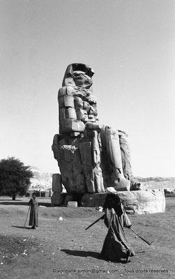 [NB086-1981-09] Temple funéraire d'Amenhotep III : Colosse de Memnon
