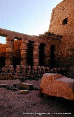 [088-1973-46] Karnak - Grande cour : Rangée de sphinx à tête de bélier (Ramsès II)  et colonnade (Chechonq Ier) touchant le côté Est du môle Sud du pylône I