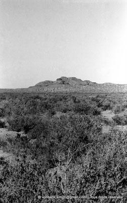 [NB052-1978-36] Massif de l'Aurès