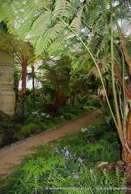 [NU900c-2012-0243] B - Bruxelles - Laeken : Serres royales - Jardin d'hiver