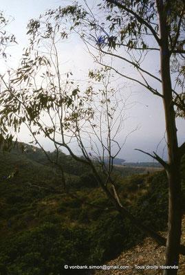 [073-1978-08] Sidi Rached : Depuis Tipasa, sur la route menant au Mausolée royal de Maurétanie