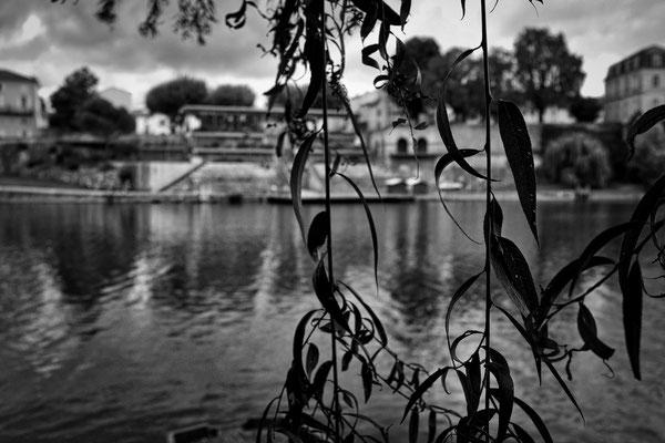 © photo : Vladia Merlet
