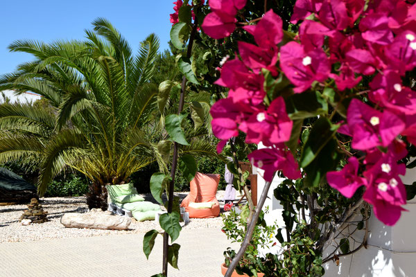Garden Onda Vcientina Algarve Portugal