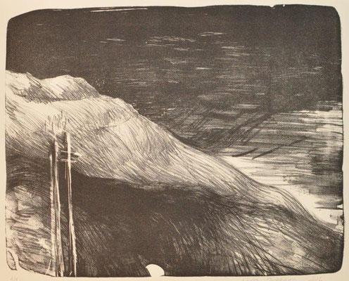 Djourina, Marta, oT, Lithographie, 1-1, 33x41 cm / 100 Euro