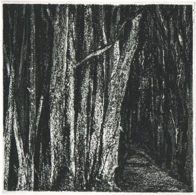 Müller, Helmut, Wald, Radierung-Reservage-Aquatinta, 2015, 11-25, 12x12 cm 151. M / 60 Euro