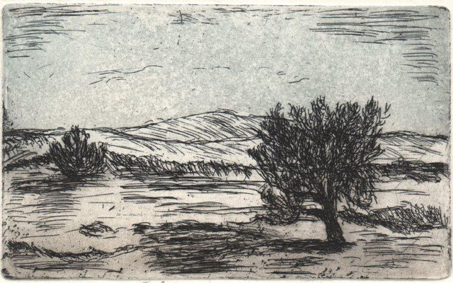 Schneider, Elsbeth, Tiefebene, Farbradierung-Aquatinta, 2014, 4-5, 9x14,5 cm / 40 Euro