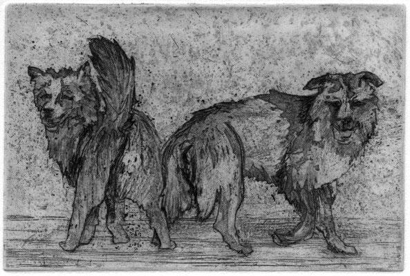 Schumann, Tine, zwei hunde, Radierung, 2015, 5-6, 9,7x14,6 cm / 160 Euro