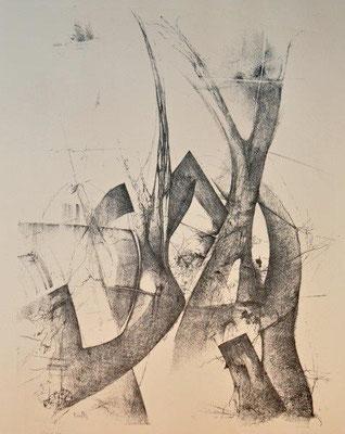 Ranft, Thomas, auctus, Lithographie, 1976, 23-25, 68x50 cm / 120 Euro