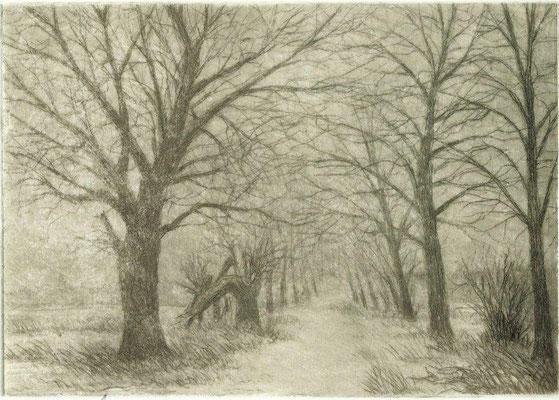 Horn, Harry, Weg im Winter, Radierung 1994, 1-40, 9,5x13,2 cm / 40 Euro