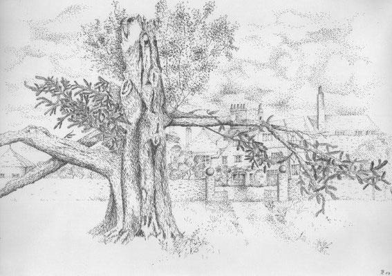 Riedel, Brigitte, Nachbarn, Zeichnung, Pigmentliner, 2017, 29,5x42 cm / 150 Euro