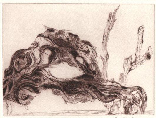 Eberle, Dagmar, Wurzel, Kaltnadel, 13,5x18,5 cm /  40 Euro