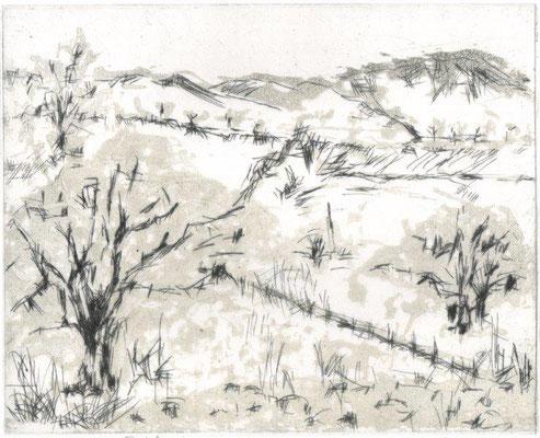 Feustel, Maja-Helen, Bei Bad Berka, Kaltnadel-Reservage, 2013, ea, 19,7x24,5 cm / 60 Euro