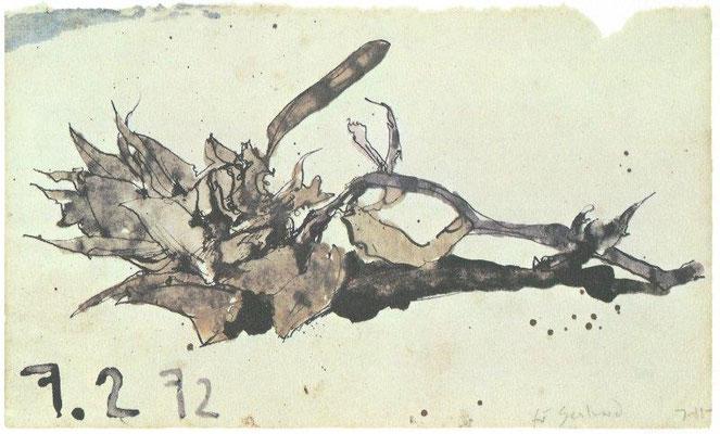 Janssen, Horst, Vertrocknete Blüten, Aquarell und Feder 1972, 12x20 cm / 200 Euro