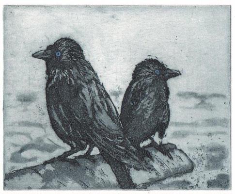 Drope, Götz, Ganz schön blauäugig, Radierung-Aquatinta, 2015, 9,5x11,7 cm / 70 Euro