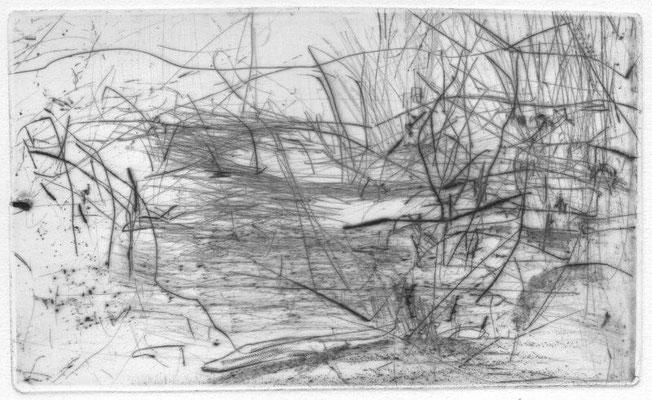 Blendinger, Günter, Landschaft mit Büschen, Kaltnadelradierung, 2003, 1-100, 10,0 x 16,5 cm / 40 Euro