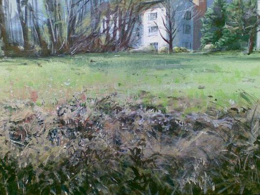 Frühlingswiese in St. Radegund bei Graz, Acryl | 50 x 70 cm | 2010/19/20