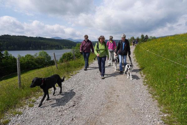 Allgäu,T-Dogs,26.-30.5.2015, Foto Nr.37