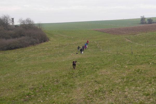 Rheingau Ostern,T-Dogs,3.-6.4.2015 Foto Nr.37