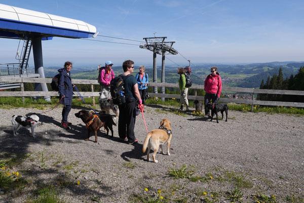 Allgäu,T-Dogs,26.-30.5.2015, Foto Nr.15