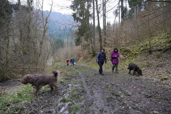 Rheingau Ostern,T-Dogs,3.-6.4.2015 Foto Nr.27