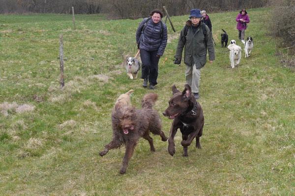 Rheingau Ostern,T-Dogs,3.-6.4.2015 Foto Nr.36