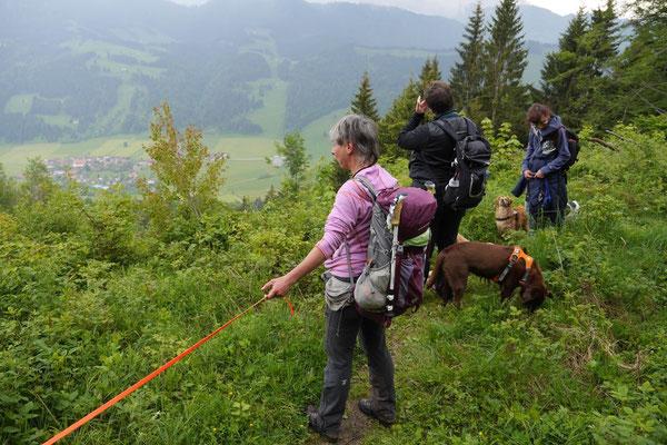 Allgäu,T-Dogs,26.-30.5.2015, Foto Nr.10