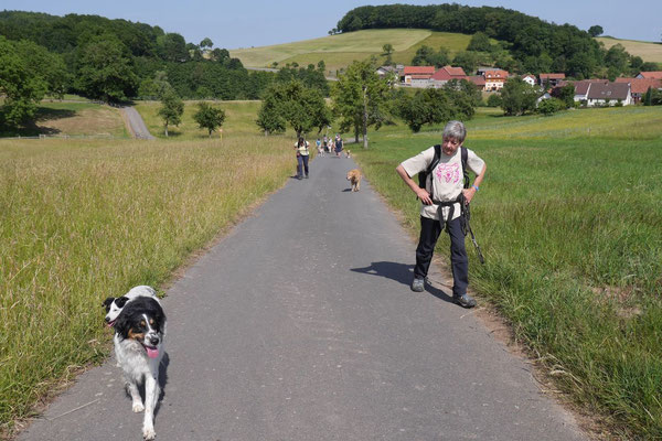 Lindenfels mit Picknick, T-Dogs, 14.6.2015, Foto Nr.16