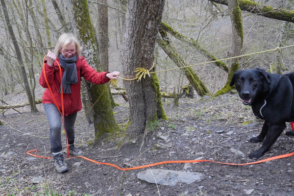 Rheingau Ostern,T-Dogs,3.-6.4.2015 Foto Nr.28