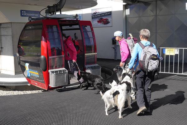 Allgäu,T-Dogs,26.-30.5.2015, Foto Nr.14