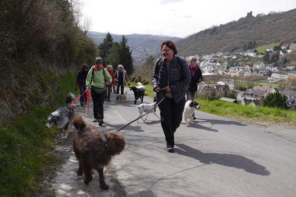 Rheingau Ostern,T-Dogs,3.-6.4.2015 Foto Nr.1