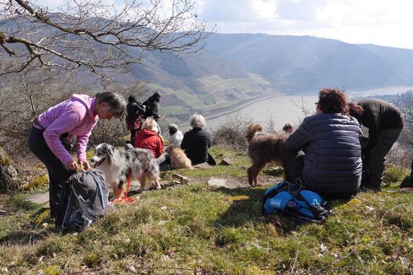 Rheingau Ostern,T-Dogs,3.-6.4.2015 Foto Nr.22