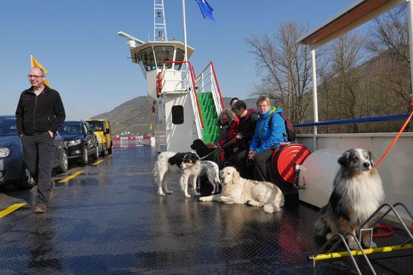 Rheingau Ostern,T-Dogs,3.-6.4.2015 Foto Nr.16