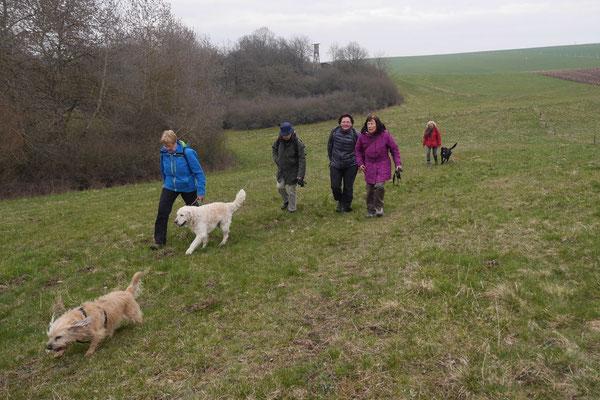 Rheingau Ostern,T-Dogs,3.-6.4.2015 Foto Nr.39
