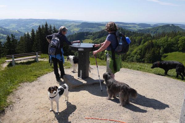 Allgäu,T-Dogs,26.-30.5.2015, Foto Nr.34