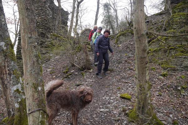 Rheingau Ostern,T-Dogs,3.-6.4.2015 Foto Nr.31