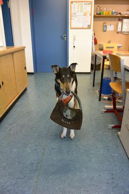 Blade trägt eine Ledertasche, auf die ein Hundekopf und sein Name aufgenäht sind. In die Tasche können zum Beispiel Aufgabenkarten gesteckt werden.