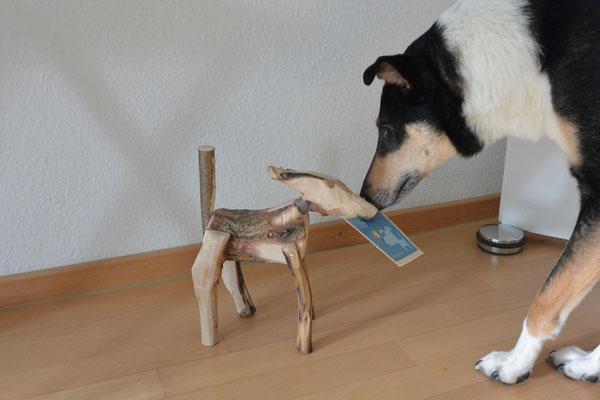 Blade schnuppert an einer etwa 20cm großen Hundeskulptur aus grob bearbeiteten Aststücken, die im Werkunterricht entstanden ist.