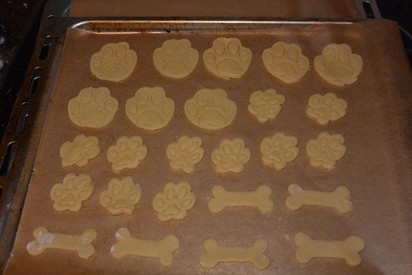 Kekse in Form von Knochen und in Form von kleinen und großen Pfotenabdrücken auf einem Blech.